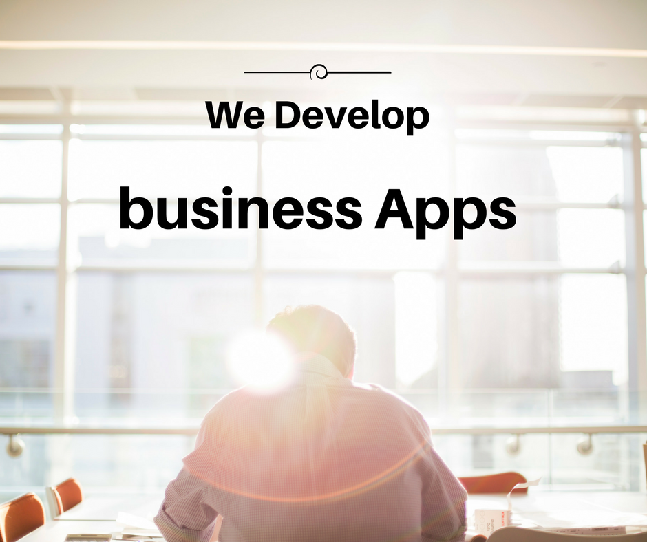 web development company , building business app